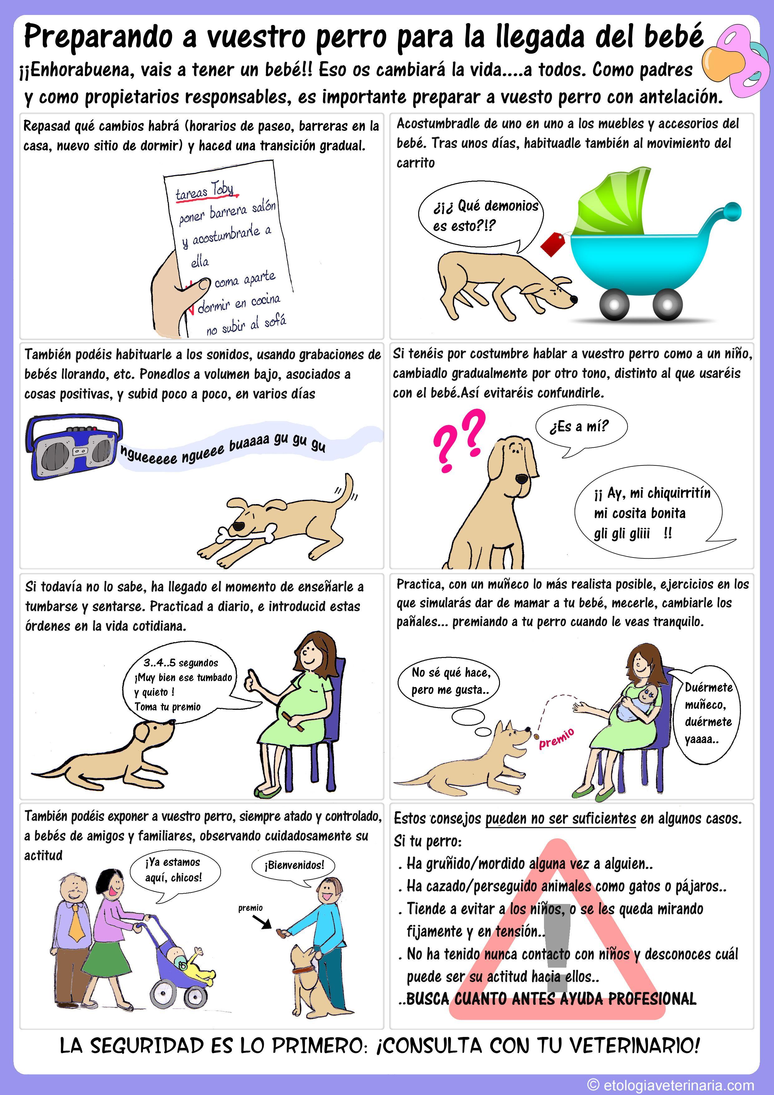 Cómo preparar la llegada del bebé a casa | centauro veterinarios