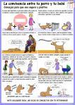 La convivencia entre tu perro y tu bebe